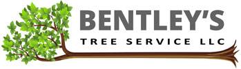 Bentley's Tree Service